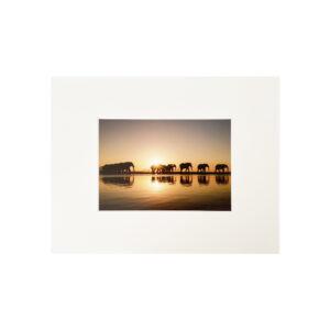 FineArtPrint Sunset Orange 24x30